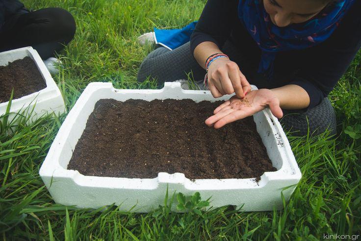 Επιθυμείτε να καλλιεργήσετε την δική σας τροφή; Έχετε ένα μικρό λαχανόκηπο ή αγρόκτημα;