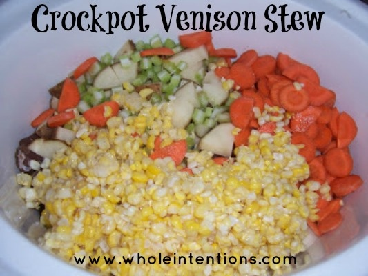 how to slow cook venison stew