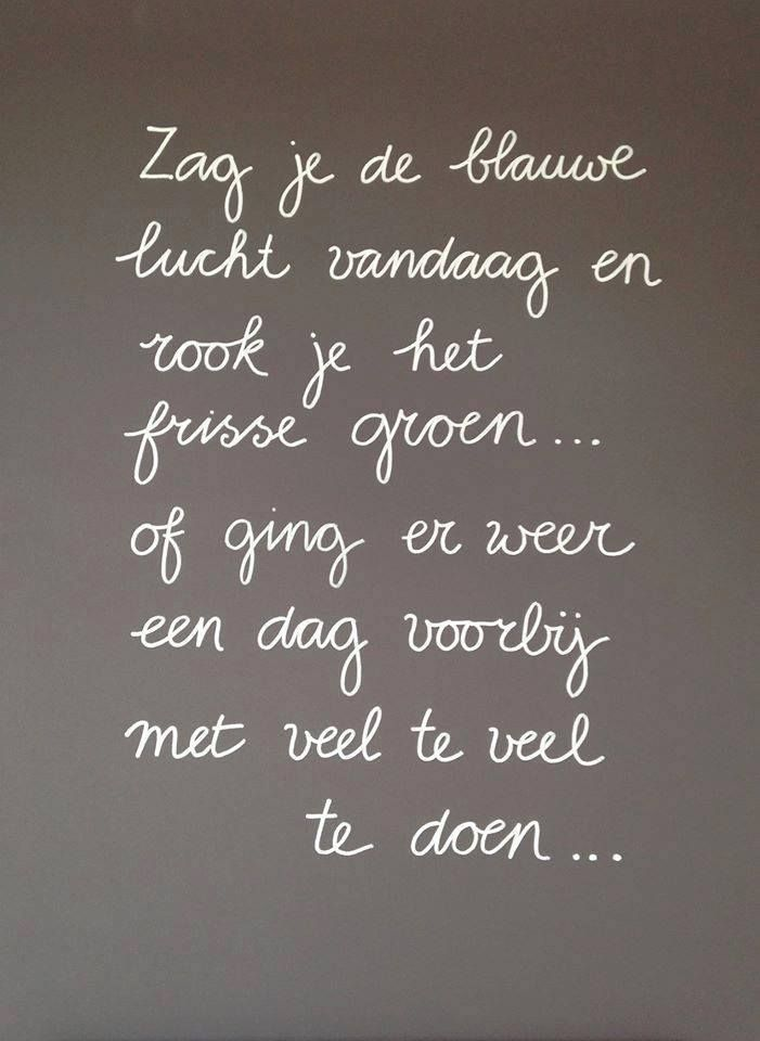 Dutch words #quote #thedailylady