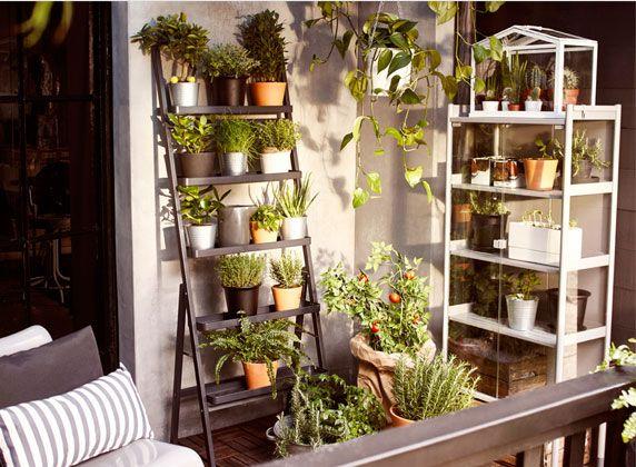 Moestuin op het balkon   Studio by IKEA - Werk in de hoogte Maak slim gebruik van je muur en werk de hoogte in. Met een verticaal plantenrek stapel je de planten en kruiden gemakkelijk op elkaar. Kijk goed welke planten meer licht nodig hebben en welke iets minder, en bepaal zo de plaats. Mix verschillende soorten van je groene vrienden en potten met elkaar voor een speels effect.