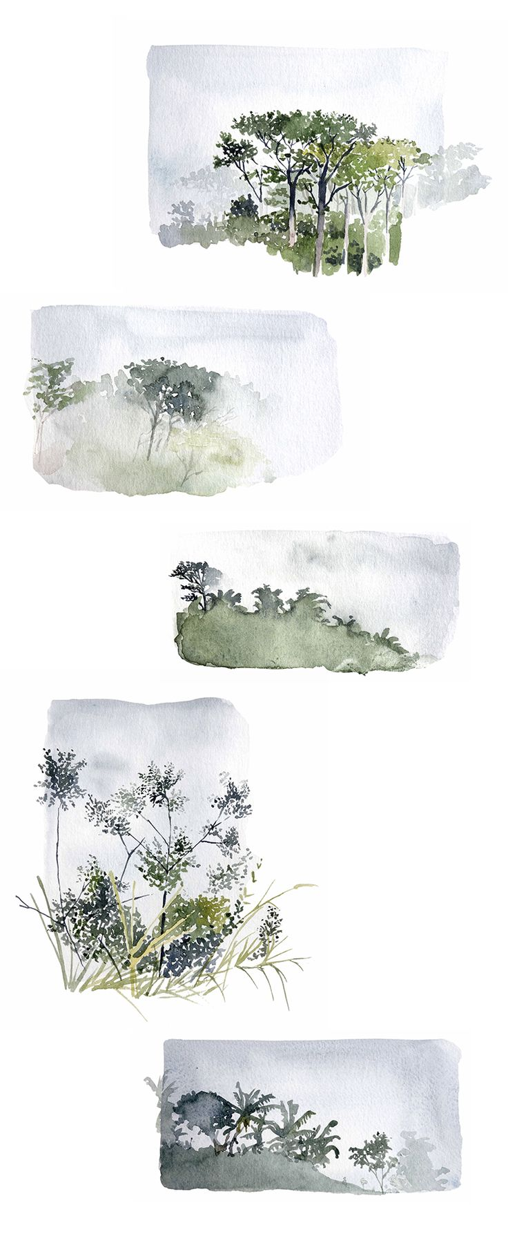 Prête moi tes yeux : le brouillard dans la jungle I