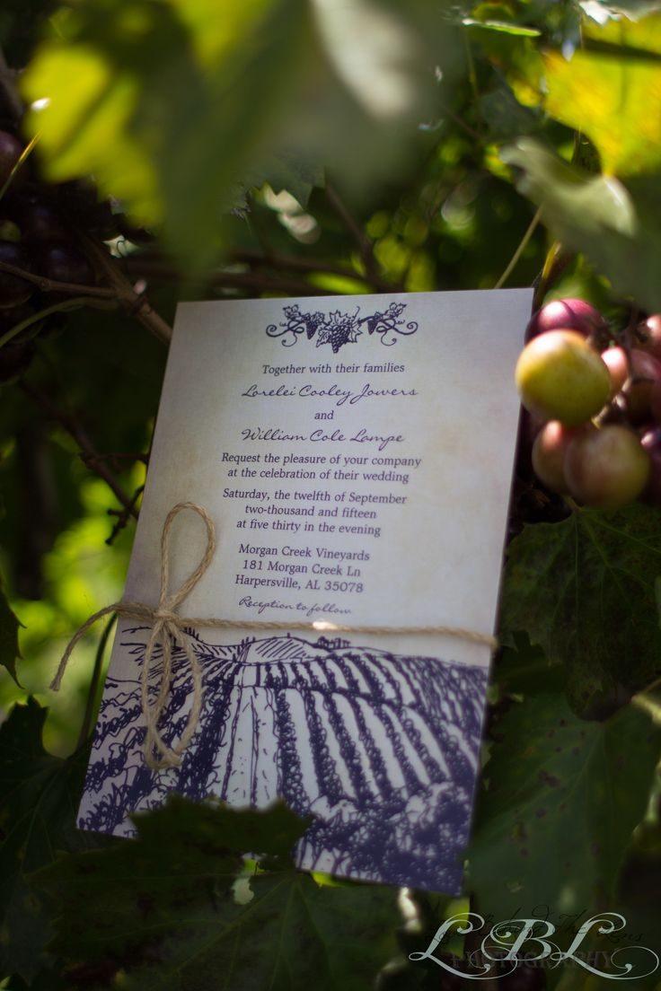 marriage invitation sms on mobile%0A Lorelei  u     Will   Love Behind The Lens Morgan Creek Vineyard Wedding  invitation set with grape