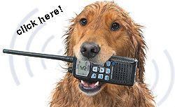 Jual HT Icom M36 Jual Handy Talky Icom IC-M36 Murah Dealer Resmi HT Icom IC-M36 Pusat Jual Handy Talky Icom M36 Murah Garansi Resmi