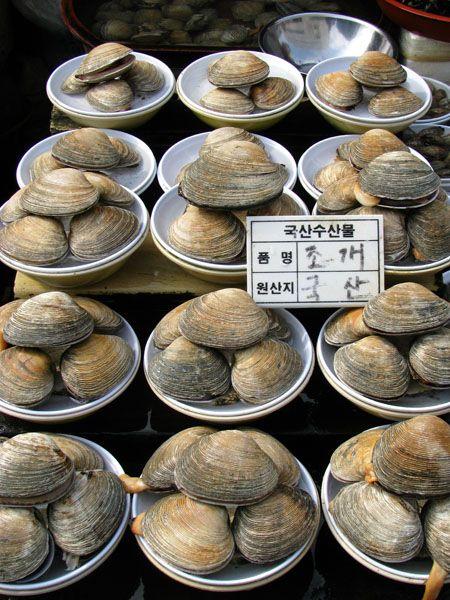 Busan, South Korea - Jagalchi Fish Market