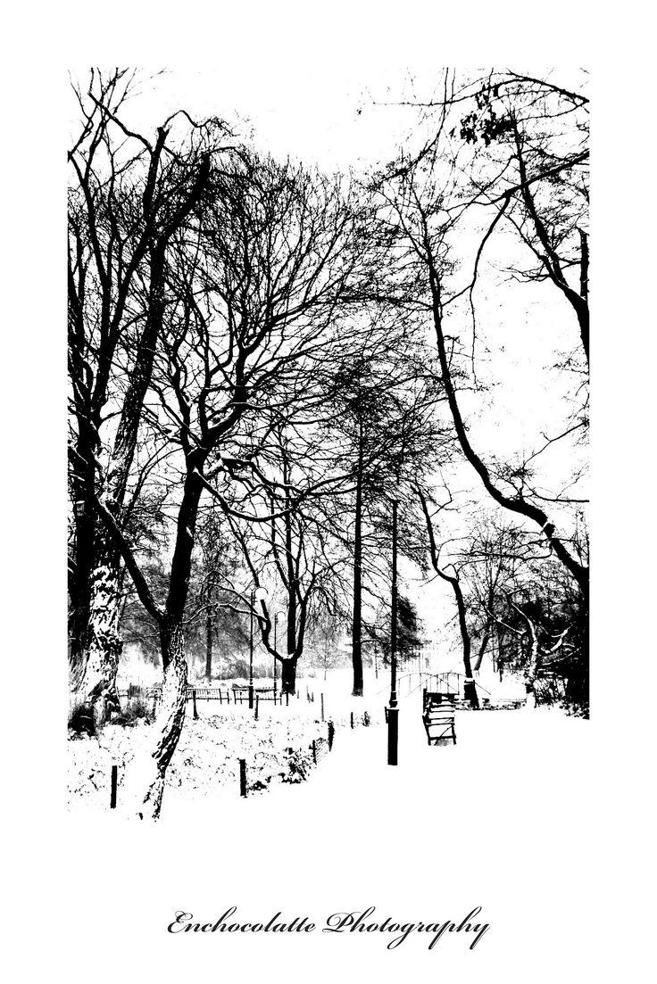Park Kellera zimą (for. Bietka Nowicka vel Enchocolatte)