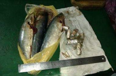 В Одессе сотрудник СИЗО принес заключенному наркотики, спрятанные в селедке