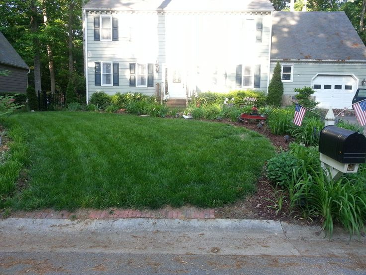 What's My Secret for a Plush Green Lawn?