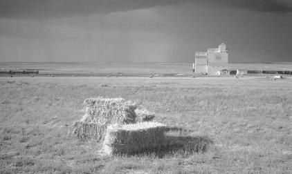 """ORIGIN OF PROVINCE NAME: Derived from the Cree Indian word kisiskatchewanisipi, which means """"swift-flowing river,"""" and was first used to describe the Saskatchewan River. NICKNAME: Canada's Breadbasket (also: The Wheat Province)."""