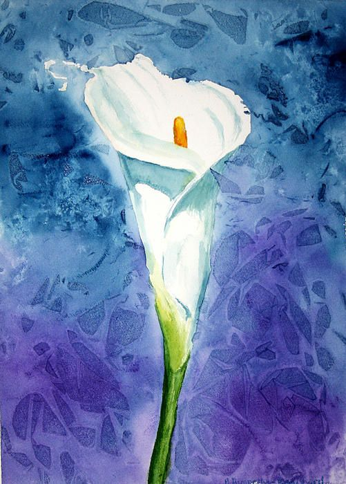 """Lily Dream - 11""""x15"""" - Watercolour on paper by Mary Pumpelly Knowland www.maryknowland.com"""