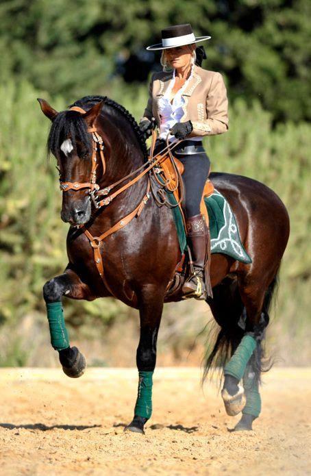 .Pura Raza Espanola Yeguada Herrera Caballos Espanoles Caballos Bailadores Andalusian Lusitano Lippizzaner spanish horse Piccador Vaquero Charro
