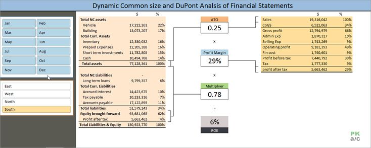 Dynamic Common Size and DuPont Analysis Financial Statements in Excel http://pakaccountants.com/dynamic-common-size-dupont-analysis-financial-statements-excel/ - Making the most of Excel Pivot tables to do two analysis in one go and that too dynamic with the help of slicers. Check out the tutorial with hints and free downloadable finished file.
