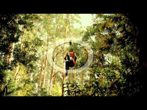 "YouTube 2'27"": The Otway Fly Tree Top Adventures, 2.5 hours from Melbourne, Victoria, #Australia More: http://www.otwayfly.com"