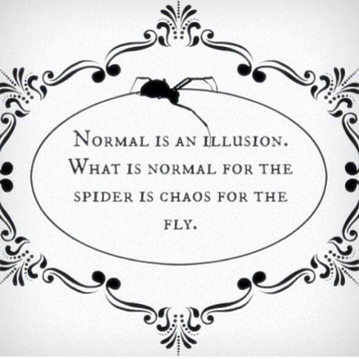 75 best das right images on pinterest funny stuff ha ha and the words normal is an illusion what is normal for the spider is chaos for the fly morticia addams the addams family altavistaventures Choice Image