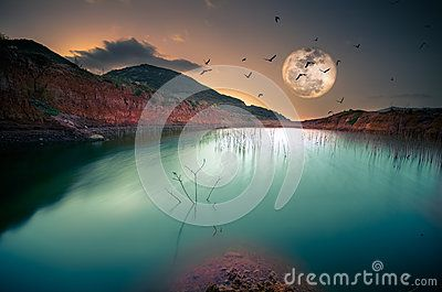 Destination: Freedom - Download From Over 57 Million High Quality Stock Photos, Images, Vectors. Sign up for FREE today. Image: 78882199