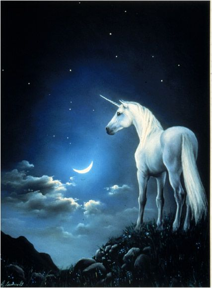 The unicorn gazes down at the beautiful sight and then looks upon the moon