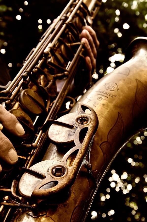 Selmer Saxophone! My favorite!