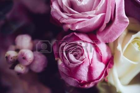 Elegant boeket van roze en witte rozen op een donkere achtergrond soft focus close up Romantische hi Stockfoto