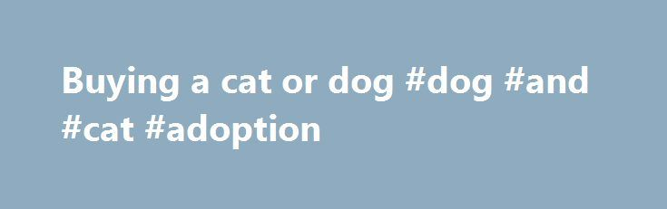 Buying a cat or dog #dog #and #cat #adoption http://pet.remmont.com/buying-a-cat-or-dog-dog-and-cat-adoption/  Buying a cat or dog Contents Too much detail?See these quick guides Do not buy a cat or dog from unknown sources – It's important that you know where it comes from and where it was born. Be particularly careful when buying dogs or cats advertised on the internet or through local media such as a newspaper. Illegally imported dogs and cats may not only carry diseases such as rabies…