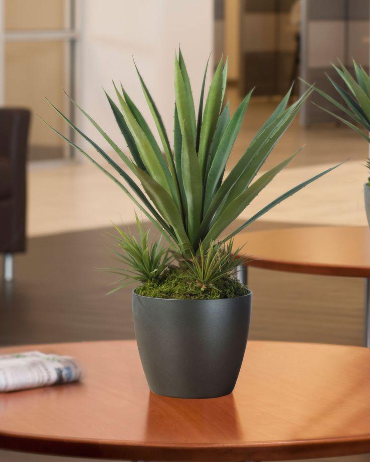 Agave Americana (Medium) Artificial Succulent Plant