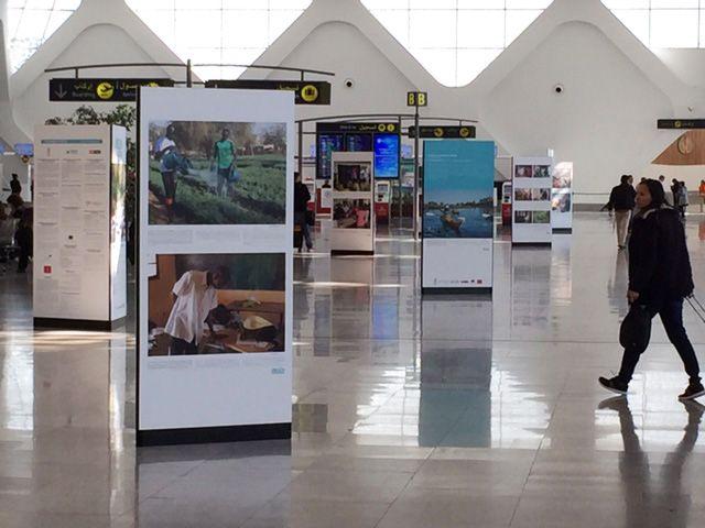 A l'occasion de la COP22 qui a débuté le 7 novembre 2016 à Marrakech, l'exposition UNESCO GREEN CITIZENS a été présentée au grand public du 7 au 30 novembre 2016 à l'aéroport de Marrakech Menara. D'autres aéroports du pays accueilleront cette exposition jusqu'en Mars 2017 : aéroports de Casablanca Mohammed V, de Rabat-Salé, de Tanger Ibn Battouta et enfin de Fès-Saïss.