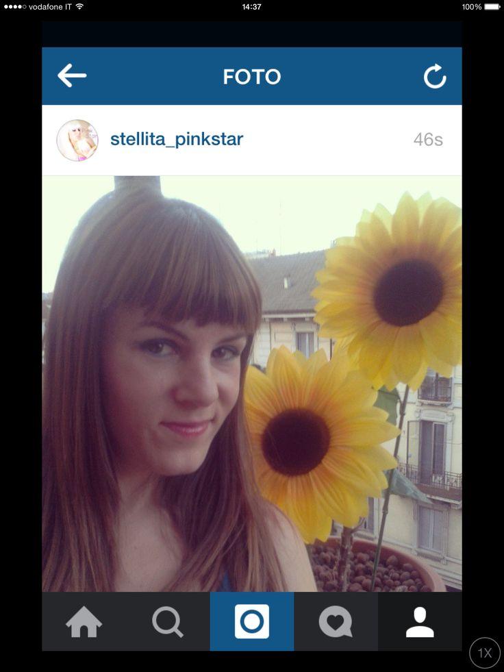 i love sunflowers. girasoles