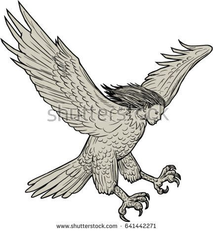 Drawing sketch style illustration of a harpy, in Greek and Roman, mythology, a female bird with a woman's face swooping looking down viewed from the side set on isolated white background.   #harpy #drawing #illustration