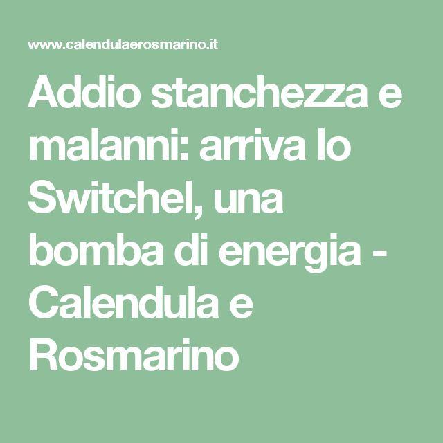 Addio stanchezza e malanni: arriva lo Switchel, una bomba di energia - Calendula e Rosmarino