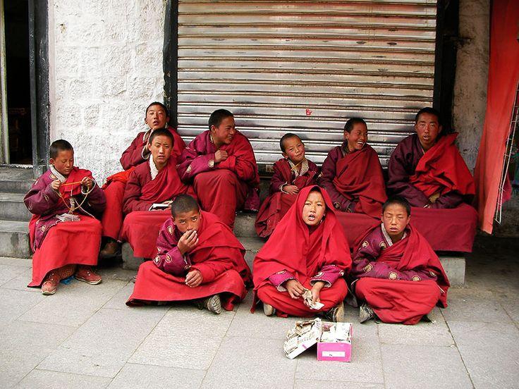 チベットで頑張るチビッ子僧侶たち / お経を唱えて寄付を募る「先輩僧侶が寄付することもあります」