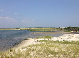 Wetlands along Barnegat Bay near the southern end of Island Beach State Park, New Jersey.jpg