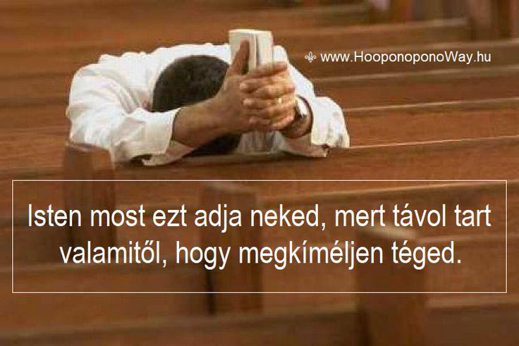 Hálát adok a mai napért. A békéd mindenen átsegít. Amikor nem úgy alakulnak a dolgaid, ahogy várod, ahogy neked tetszik, vagy ahogy megfelelőnek látszik, emlékeztesd magad: Isten most ezt adja neked, mert távol tart valamitől, hogy megkíméljen téged. Így szeretlek, Élet!  Köszönöm. Szeretlek ❤  ⚜ Ho'oponoponoWay Magyarország ⚜