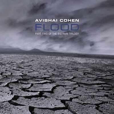 Found First Drops by Avishai Cohen with Shazam, have a listen: http://www.shazam.com/discover/track/62692710