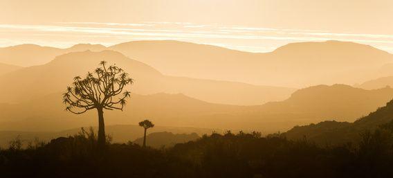 Afrikaanse zonsondergang panorama van Vincent de Jong