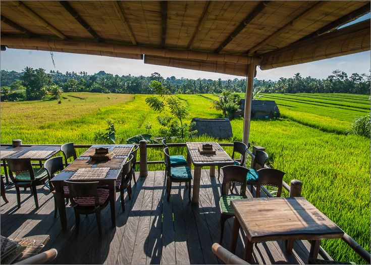 Ubud - Sari Organik - Terrace