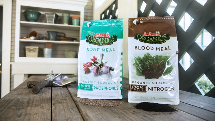 Bone Meal vs Blood Meal. What's the difference?  #jobesorganics #organic #fertilizer