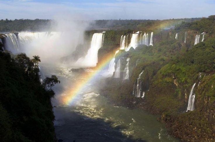 Pantanal Brazil | Preview Our Brazil Pantanal Tour on 60 Minutes!