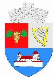 ROU SB Valea Viilor CoA - Galeria de steme și steaguri ale județului Sibiu - Wikipedia