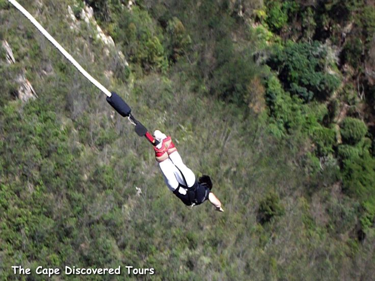 Bungy jump from the world's highest bungy bridge.  The view from Africa's highest bridge captures all the majesty and tranquility of the Bloukrans River Valley.  So much fun on tour with The Cape Discovered!