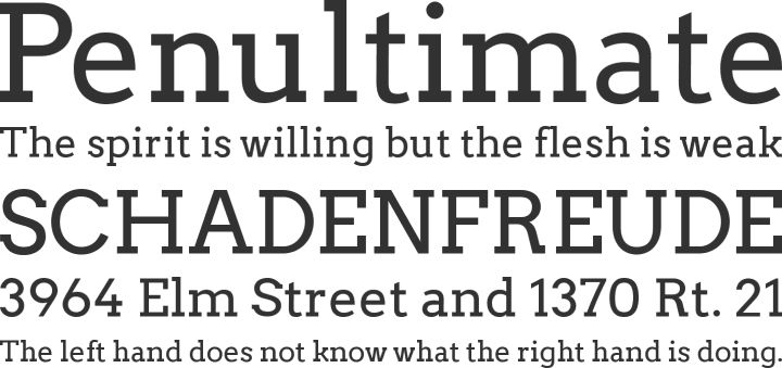 Arvo. Open source and available from Google fonts and font squirrel. I spotted it at http://12weekyear.com and it is very crisp and clear.