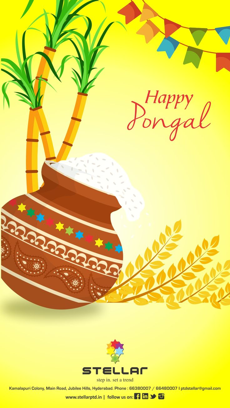 Pongal festival essay 17 best ideas about happy pongal wishes happy 17 best ideas about happy pongal wishes happy this auspicious festival bring you overflowing happiness joy kristyandbryce Images