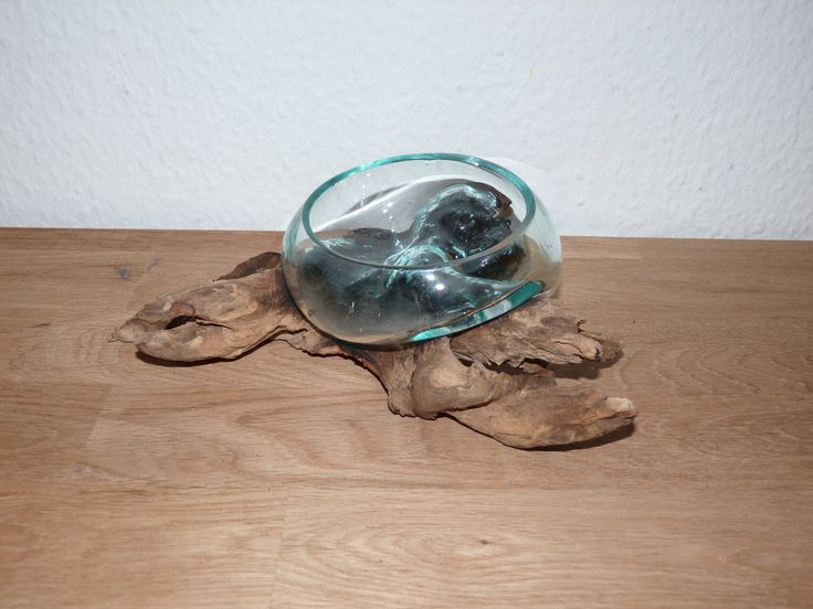holz mit glas unikat wurzel treibholz kaffeebaum mundgeblasen individuell einzelstck dekoration wurzelholz
