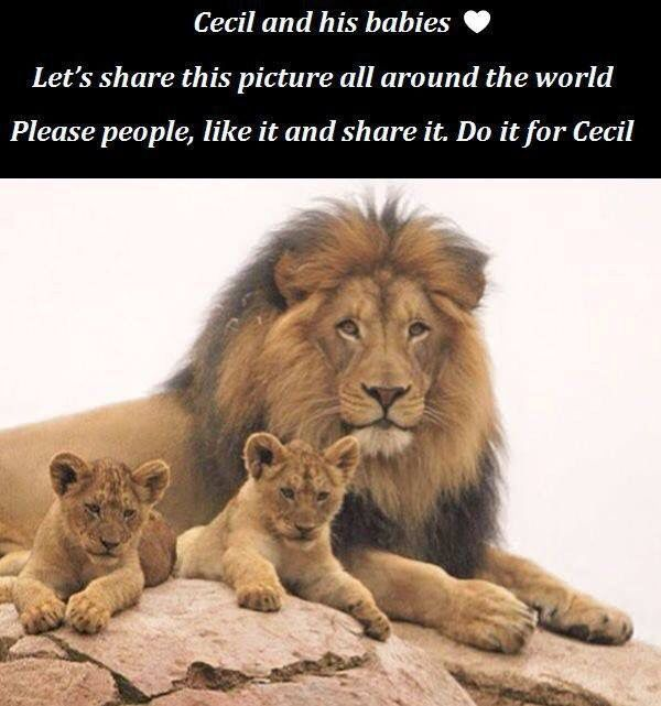RIP Cecil. That bastard will get what he deserves.