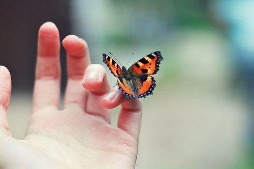 Butterflies Kisses, Be Strong