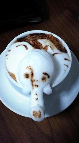 Elephant foam latte art / http://l2.yimg.com/