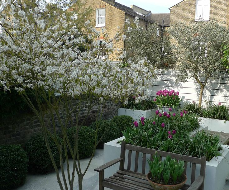 Rendered raised beds give this garden a crisp, contemporary feel that is softened by planting. Design by Ruth Willmott.