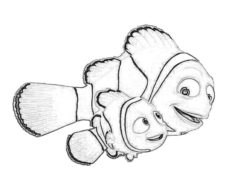 nemo coloring pages images google | 136 best Illustrate images on Pinterest | Cartoon, Animal ...