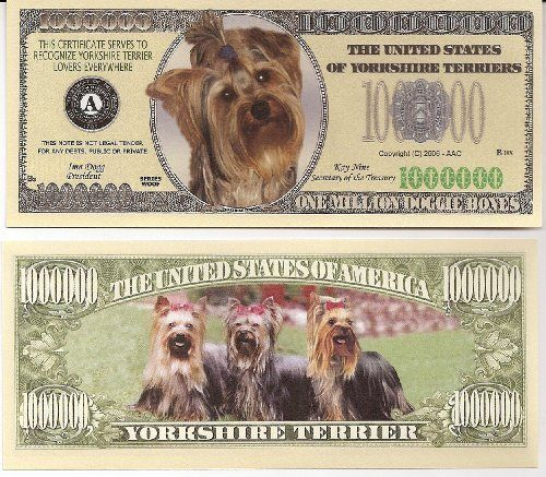Yorkshire Terrier $Million Dollar$ Novelty Bill Collectible by Yorkshire Terrier Dog Collectible. $1.47. Yorkshire Terrier $Million Dollar$ Novelty Bill Collectible. These bills are the same size and feel of real money. They are finely detaileds and colorful on both front and back with high quality printing. Makes a great gift, collectible or frame and display. Price listed is for 1 bill. Buy as many as you want, still FREE SHIPPING!! Please visit my store for nearly 1...
