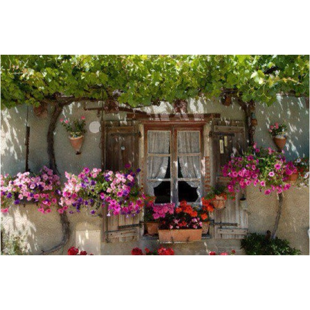 Beutiful!!!!!: Doors, Favorite Places, Outdoor, Gardens, Windows, Flowers, Window Boxes