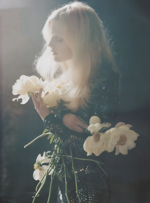 ✕ Magical, just magical / #flowers #glow #whimsical