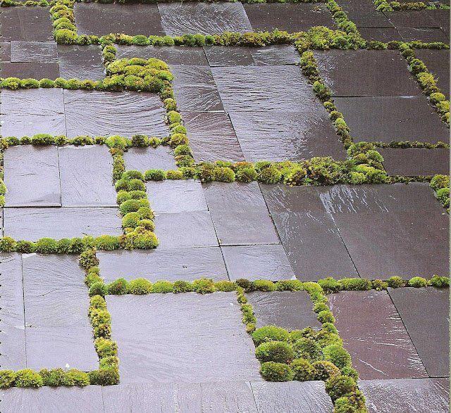 Dalles En Ardoise Et Mousse Dans Les Joints Amenagement Paysager Idees Jardin Amenagement Jardin