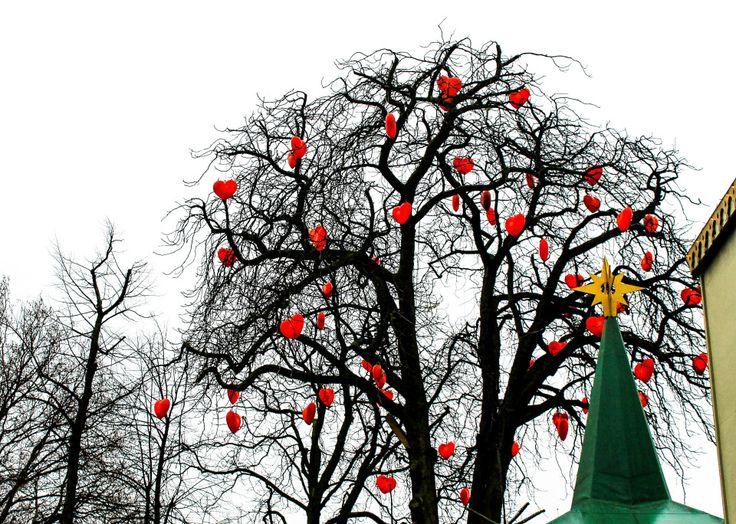 Особенности дня Валентина в Норвегии